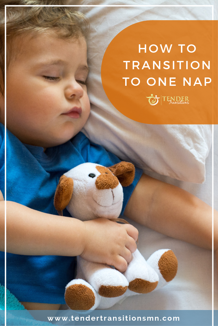 transitioning to one nap - young boy sleeping with teddy bear