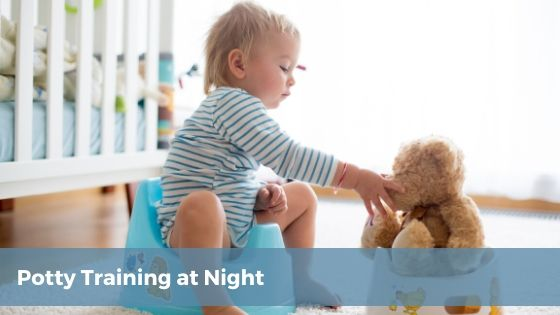 Potty Training at Night - Tender Transitions