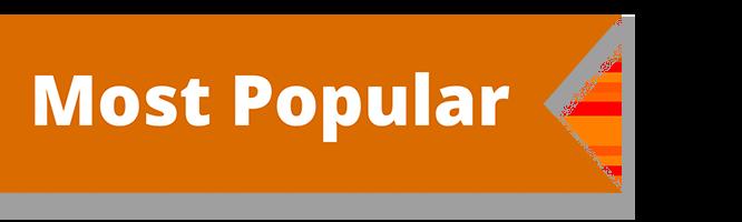 Most popular header - Tender Transitions